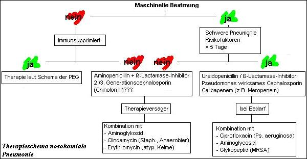 kalkulierte antibiose pneumonie
